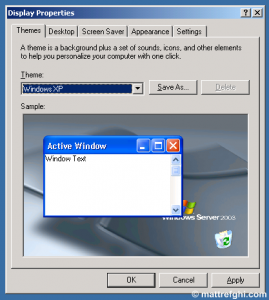 "A screenshot of the ""Themes"" tab of the ""Display Settings"" dialog, with the ""Windows XP"" theme selected."